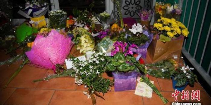 吸取枪击案教训 新西兰拟加强遏止网络极端主义