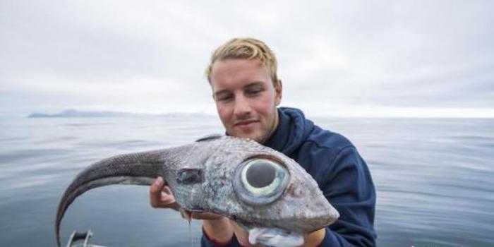 挪威男子钓到深海怪鱼 双眼奇大宛如外星生物(图)