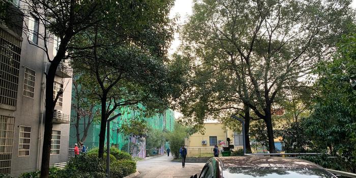 长沙9岁男孩遇害案嫌疑人父母:凶器为父亲的改锥