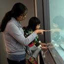 台北故宫游客逐年减少 商品销量偏低库存大量积压
