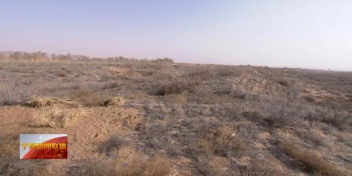 宁夏党委书记到中卫沙漠污染整治现场听取报告