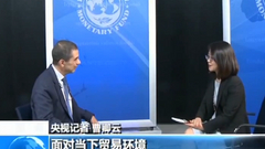 专访IMF财政事务部主任:中国财政有能力应对贸易摩擦