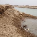黄河河道新乡部分段非法挖沙猖獗 河道遭到破坏