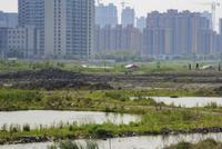 中民投失守上海外滩地王项目 曾激进布局地产