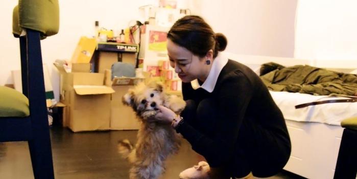 这位上海姑娘花38万元 克隆了自己的爱犬
