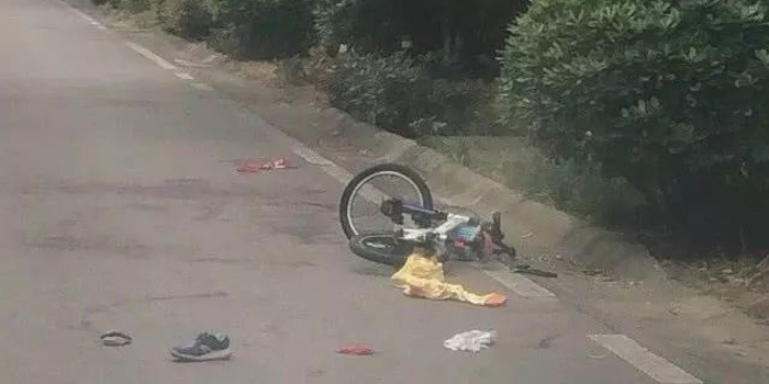 男孩上学路上遭大狗撕咬 涉事小区业主称狗患严重