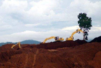 接棒铁矿石?印尼提前禁镍出口 镍价暴力上涨创新高
