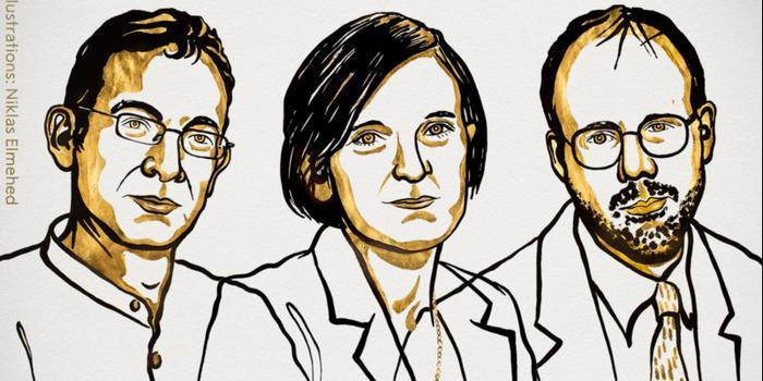 鲁政委:诺奖颁给发展经济学家表