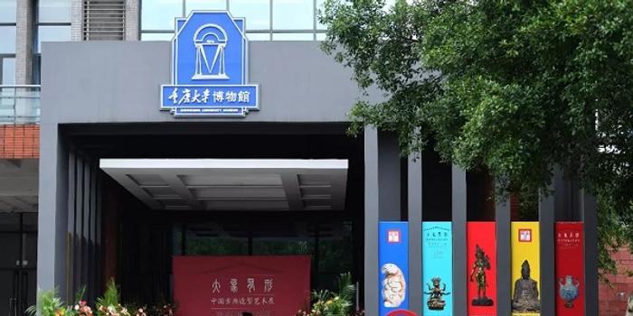 重庆大学博物馆参评专家否认参与鉴定:简单参观