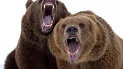 """""""神雾双熊""""二季度频频坑机构 华夏基金两日浮亏超过3亿元?!"""