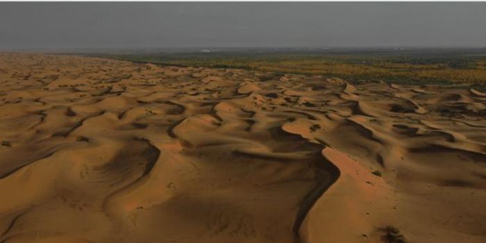 十几年前的造纸黑液,在腾格里沙漠被遗忘