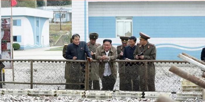 金正恩视察朝鲜空军 指导部队多训练突袭战法