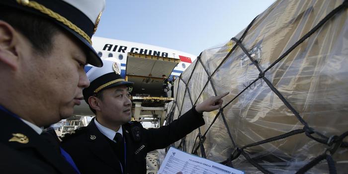 796件套意大利返还中国文物艺术品 今晨落地通关