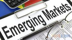 土耳其阿根廷救市未提振投资者信心 新兴市场仍危险