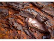 大商所铁矿石期货一字板封死涨停 创逾22个月新高