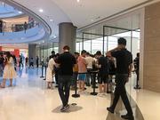 iPhone 11线下开售:普通配色现场可买 暗夜绿断货