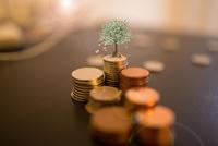 视觉中国遭数家基金公司下调估值 多数给了两个跌停