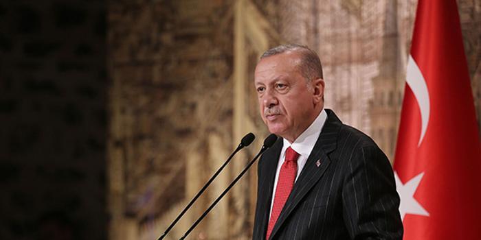 """土耳其搅叙利亚""""棋局"""" 埃尔多安见普京喜忧参半"""