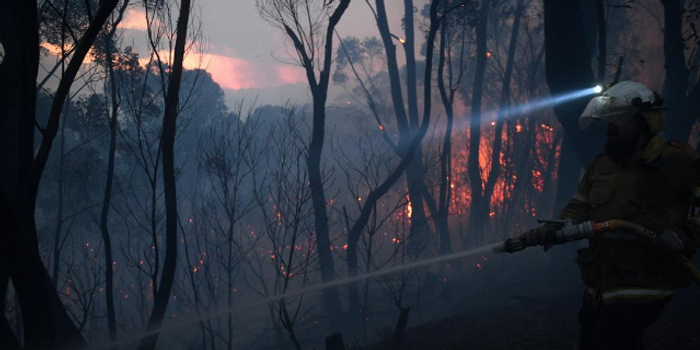 澳大利亚森林大火已致2死数十伤 专家:还会加剧