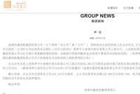 佳源国际发声明:实控人所持股权不存在任何质押情形