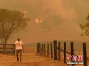 澳大利亚新州强风天气致山火失控 南岸交通枢纽关闭