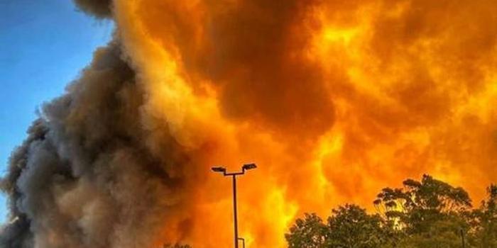 澳大利亚发生十几起森林大火:多处房屋被毁(图)