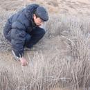 从治理荒漠化到拓殖火星:中国科学家走向未来