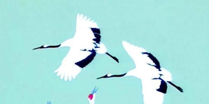東亞六國攜手鶴類保護 啟動2020東亞鶴年倡議