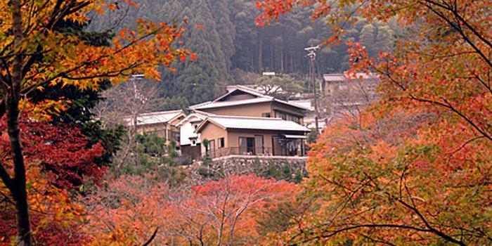 日媒称日本老式民居受外国游客欢迎:有文化韵味