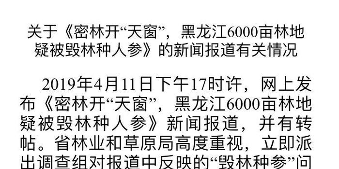 黑龙江六千亩密林疑被毁种人参 官方:在调查取证