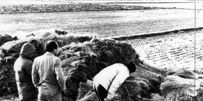 韩国电影《杀人回忆》凶手原型曾是警方调查对象