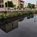 生態環境部:汕頭市對督察整改的漠視程度令人震驚