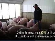 还真打啊?美国猪农:我以为特朗普和中国只是吵吵架