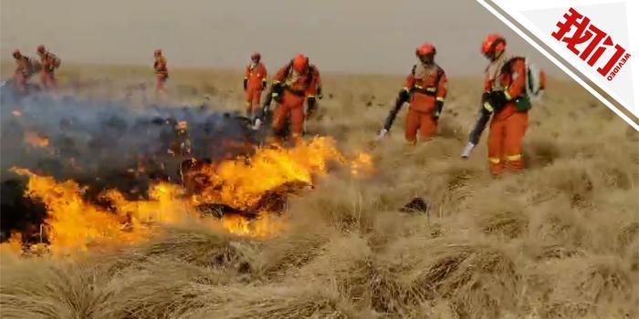 呼伦贝尔山火数百森林消防员扑救 系蒙古国入境火
