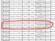 衡水升降梯事故致11死 涉事项目曾因违规预售被罚3万