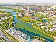 """新疆阿克苏地区生态治理纪实:荒漠上筑起""""绿色长城"""""""