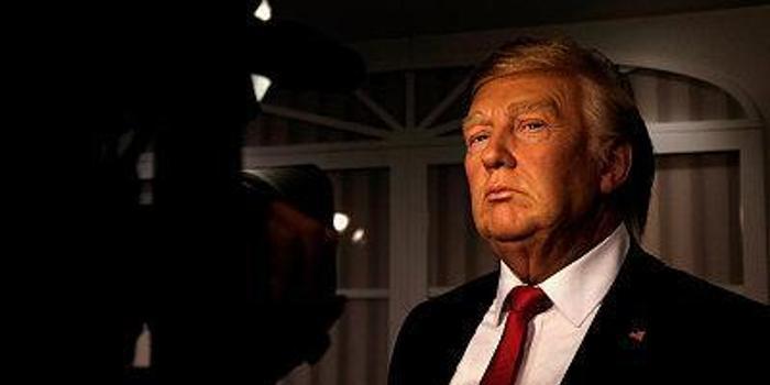 特朗普直面弹劾危机 已进入调查决策阶段