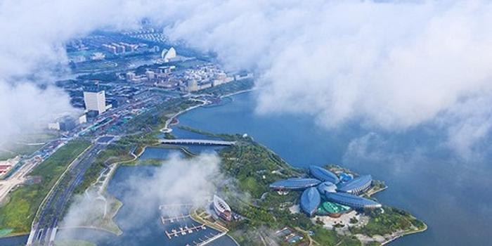 臨港新片區招商會:企業從世界來 到上海臨港去