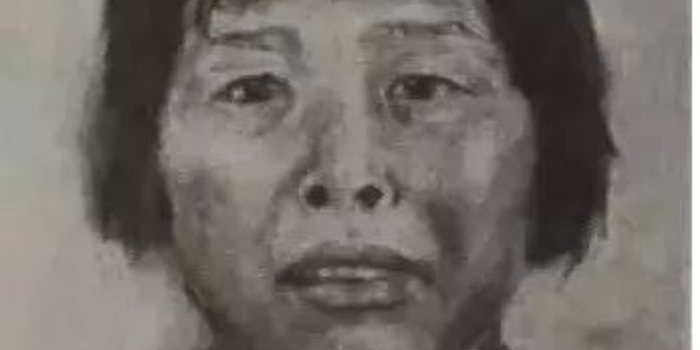 """人贩子""""梅姨""""画像公布 寻子14年的汉子看到希望"""