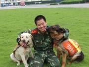 记得10年前深入北川的那两条搜救犬吗?它们都走了