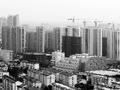 春节返乡看楼市:有的又涨了有的卖不动
