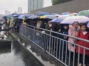 春节近20万人参观南京大屠杀遇难同胞纪念馆(图)