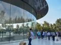 """苹果新总部大楼遭遇""""玻璃门"""":员工误撞玻璃门受伤"""