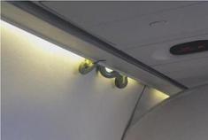 1.5米大青蟒惊现墨西哥航空客机 不速之客令乘客抓狂