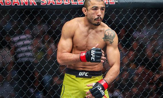 何塞-奥尔多雏量级首秀UFC245上演 对手定为马龙-莫拉斯
