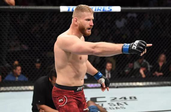 UFC格斗之夜167综述:布拉乔维奇KO获胜或拿挑战权
