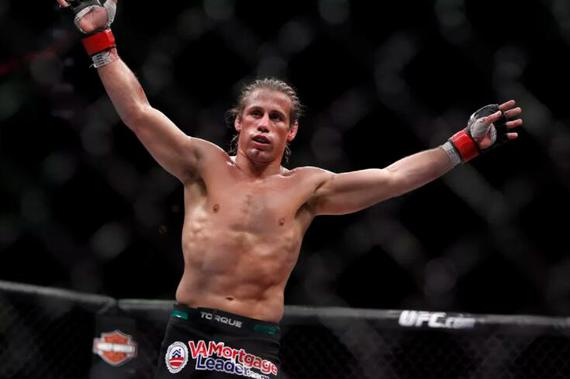 法贝尔将在UFC245迎战新秀彼得-彦