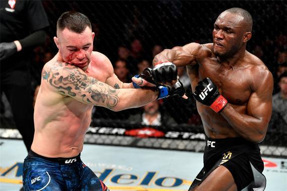 UFC245综述:乌斯曼努涅斯卫冕 亚历山大成新任冠军