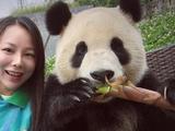 囧哥:熊猫爱合影,还会找角度