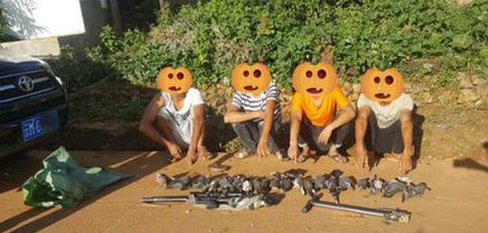 保山4小伙持枪猎杀21只野鸟被抓